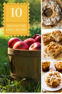 This is a list of 10 epically awesome fall apple recipes.